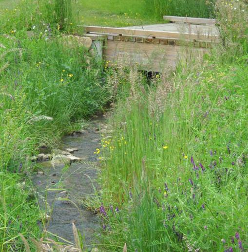 mesures compensatoires pour la biodiversité