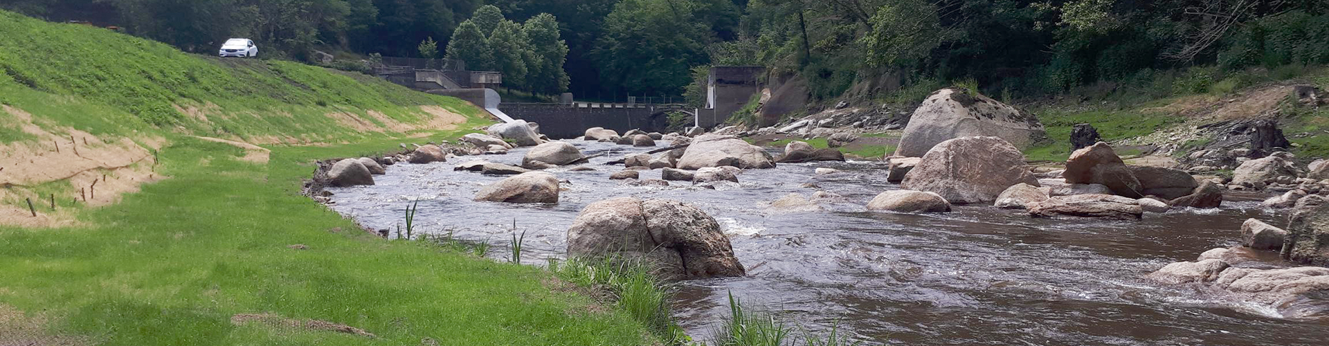 Entretien et restauration des berges
